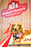 stella&chewys sausage party_8009