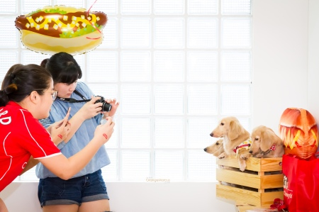 stella&chewys sausage party_8017
